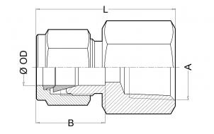 CHR. Threaded Female Connector (NPT & BSP) or Socket Weld (SW)